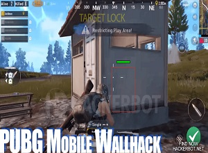Does PUBG Mobile Aimbot Work?
